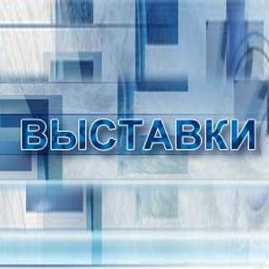 Выставки Павловки